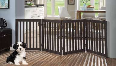 image feature pet gates