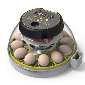 KEBONNIXS Automatic Egg Incubator, 12 Egg Capacity with a Humidity Display