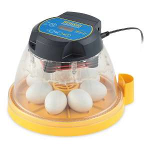 Brinsea Products Automatic Egg Incubator