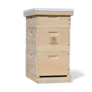 Busy Bee's Amish 8 Frame Langstroth Bee Hive