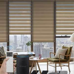 Graywind Motorized Zebra Sheer Blinds Compatible with Alexa Horizontal Light Filtering Window Shades Remote Roller Blinds with Valance