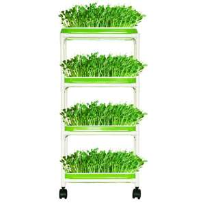 LeJoy Garden 4 Layers Sprout Trays Soil-Free