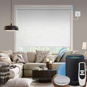 Graywind Motorized 100% Blackout Roller Shade with Alexa Google Smart Home Control Build-in Hardwired Window Shades Thermal Insulated Window Blinds, Customized Size