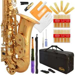 Lazarro Professional Gold Lacquer 21 Reeds Saxophone
