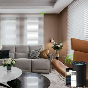 Yoolax Motorized Window Blinds Shangri-la Sheer Shades Light Filtering Remote Control Wireless Rechargeable Capable with Alexa and Siri Customized