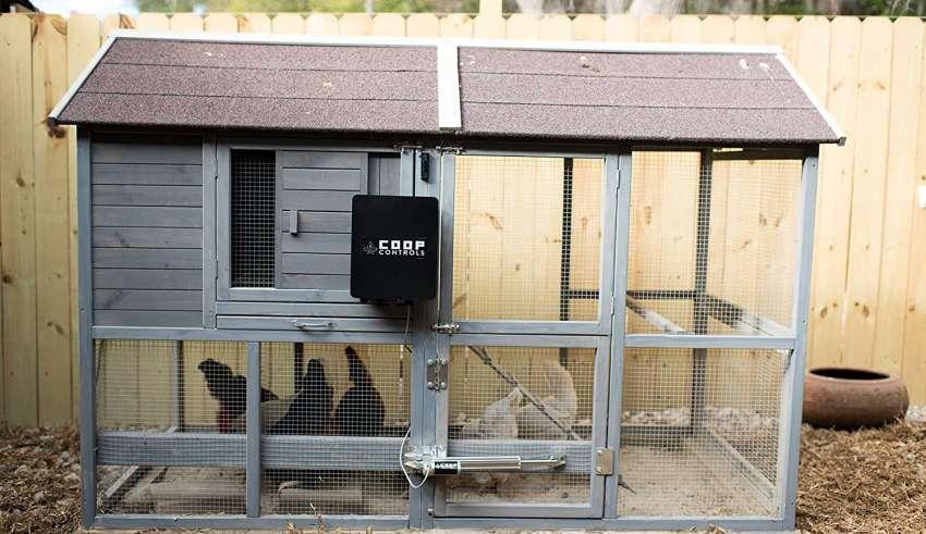 image feature Automatic Chicken Door