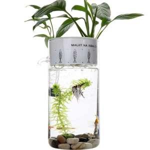 PLAFUETO Creative Glass Fish Tank Ecological Aquarium for Desk Office