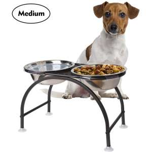 AISHN Elevated Dog Bowls Iron Stand Raised Pet Dog Feeder