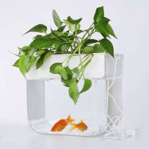 Joyfay Aquaponic Fish Tank- Fish Tank, 3.2 Gallon, Hydroponic Cleaning Tank