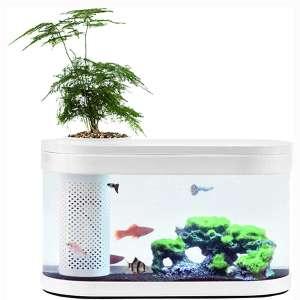 Sheebo 2.5 Gallon Modern Aquarium Kit, Small Amphibious Ecology Fish Tank with LED Ambient Light