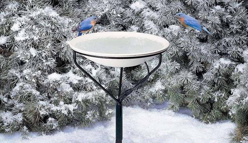 Heated Bird Baths