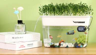 image feature Aquaponics Plants