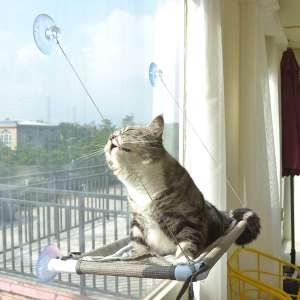 PEFUNY Cat Window Perch
