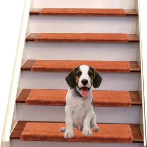 Jorviz Bullnose Carpet Stair Treads Set of 14 Soft Non Slip Self Adhesive Indoor Stair Protectors Pet Friendly Rugs Covers Mats