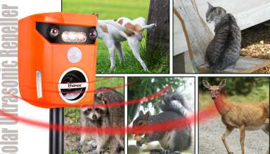 Solar-Powered Animal Repeller
