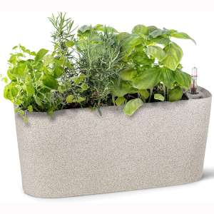 Windowsill Rectangular Self Watering Herb Garden | Large Plastic Planter Pot for Herbs, Greens, Flowers, House Plants and Succulents | Indoor:Outdoor Flower Pot (Stone Color)