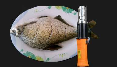 image feature Fish Scalers