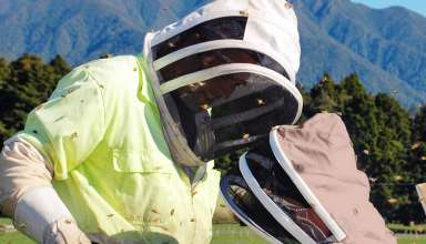 image feature Beekeeper Suits