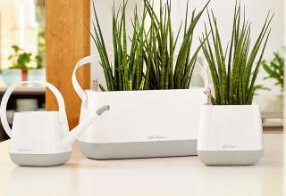 image feature Self Watering Planters