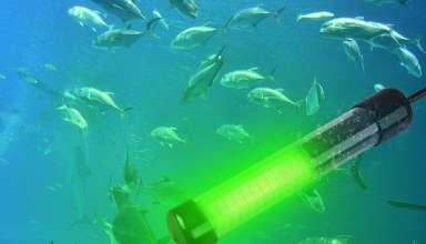 image feature Underwater Fishing Lights